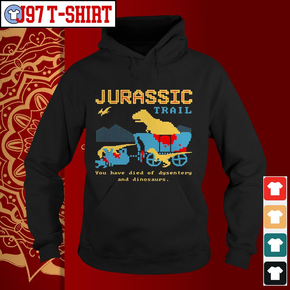 Jurassic trail you have died of dysentery and dinosaurs Hoodie